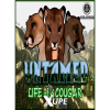 STRATEGY FIRST Untamed: Life of a Cougar (PC - Steam Digitális termékkulcs)
