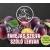 SZAFI Szafi Free fahéjas szilva-szőlő lekvár 350 g