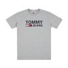 Tommy Hilfiger Tommy Jeans Classic Logo T-Shirt DM0DM04837 038