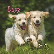 "TOPTIMER Naptár, fali, TOPTIMER, ""Dogs"" naptár, kalendárium"