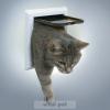 TRIXIE cica ajtó 2 állású (15x14-es belső méret)