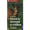 Ute Wilhelmsen Állatok és növények az erdőben