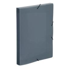 """VIQUEL Gumis mappa, 30 mm, PP, A4, VIQUEL """"Coolbox"""", áttetsző füstszínű irattartó"""