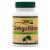 Vitamin Station Ginkgo Biloba 100x -Vitamin Station-