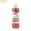 Viwa vitality - áfonya 500 ml